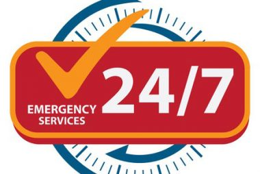 24 Hour Emergency Pest Control Services